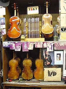 Stein on Vine Instruments